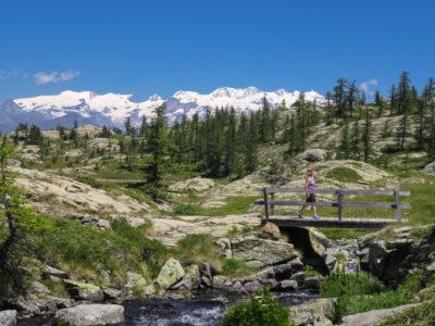 VALLE D'AOSTA-Escursionista Parco Naturale Mont Avic (foto Enrico Romanzi)-4374
