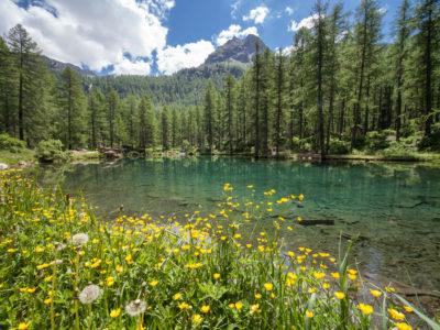 VALLE D'AOSTA-Lago Pellaud Rhêmes-Notre-Dame (foto Enrico Romanzi)-0830