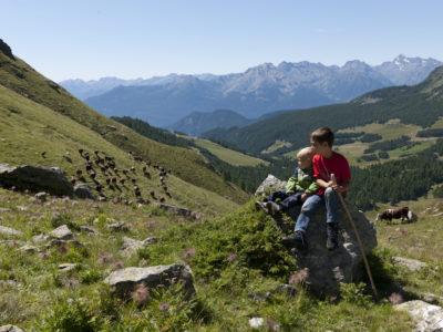 VALLE D'AOSTA-Mucche con giovani pastori (foto Stefano Venturini)-19