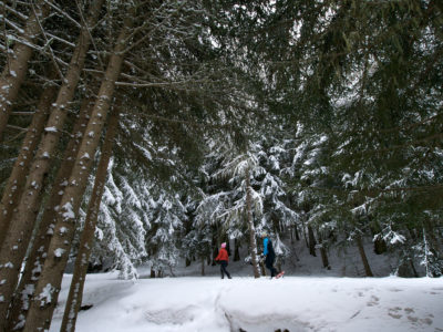 VALLE D'AOSTA, Racchette da neve a cogne (foto paolo rey)10