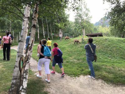 VALLE D'AOSTA-Visitatori Parc Animalier Introd-19399012